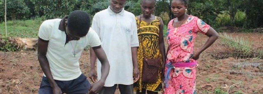 African Future Farmers